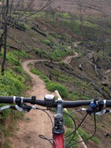 Dirtopia Delvera MTB Trails