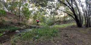 Kingskloof Mountain Bike Trail